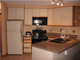 Iron Horse Resort 3084 - Kansas City vacation rentals