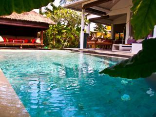 Blue Line Villa - Bali vacation rentals