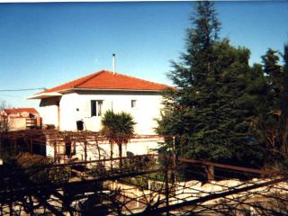 Nice big terrace where u can sleep under pine tree - Nerezisca vacation rentals