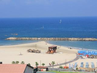 LUXURY DUPLEX WITH  SEA VIEW, TERRACE ON THE BEACH - Herzlia vacation rentals