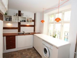 Luxury Apartment Downtown Copenhagen - Copenhagen vacation rentals