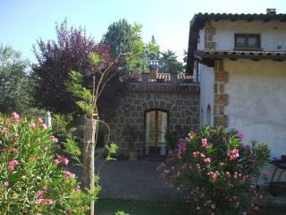 Country House between Orvieto and  Bolsena Lake - Civitella d'Agliano vacation rentals