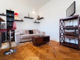 Wonderful Studio Vacation Rental, Nice Etoile - Nice vacation rentals