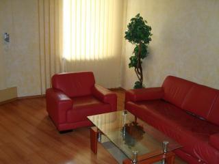 VIP-apartment on Kchreschatyk-WI-FI,jacuzzi - Kiev vacation rentals