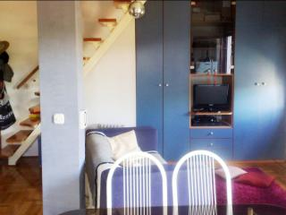 Cheap&Cosy Flat For Rent In Zagreb - Zagreb vacation rentals