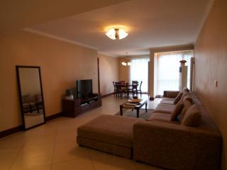 3BD 2BTH (3Beds) Eastapt-Fully Serviced Apartment-Beijing (CBD) #6 - Beijing Region vacation rentals