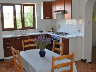 Apartmani Drenovica - A1 - Pula vacation rentals
