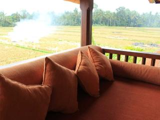 Two Bed Room Pool Villa Rental in The Rice field - Ubud vacation rentals
