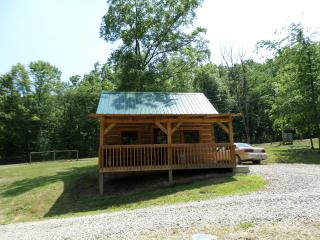 Nickel Valley Resorts Cabin One - Frazeysburg vacation rentals