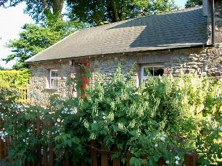 Chloe's Country Cottages: Mill Cottage - New Ross vacation rentals