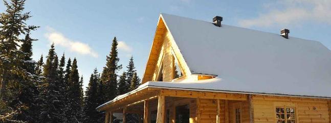 Cabin Le Wapiti - Image 1 - La Malbaie - rentals