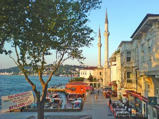 OTTOMAN HOUSE in a prestigious part of ISTANBUL - Istanbul vacation rentals