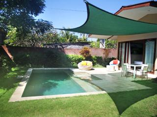 Nice 2 Bedrooms Pool Villa close to the beach - Sanur vacation rentals