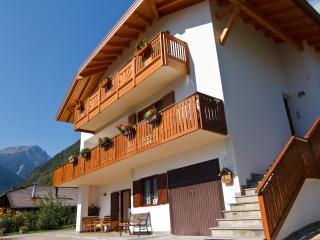A cozy B&B in the Dolomites - Concei vacation rentals