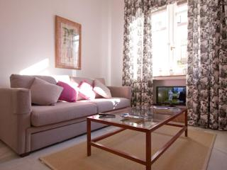 Atlantic next to Cathedral 4 pax - Seville vacation rentals