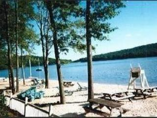 491 Laurelwoods~ FUN FOR EVERYONE~Sleeps 10-12 - Lake Harmony vacation rentals
