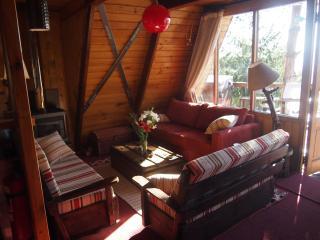 Traditional SKI CHALET - Farellones/El Colorado- CHILE - Santiago vacation rentals