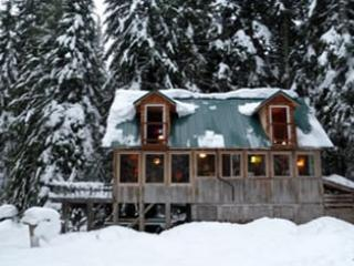 Trillium Lake and Government Camp Secluded Cabin - Government Camp vacation rentals