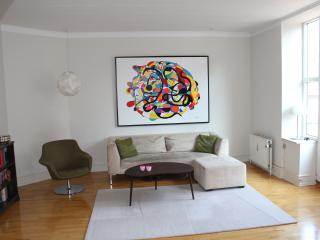 Spacious flat in trendy Vesterbro - Copenhagen Region vacation rentals
