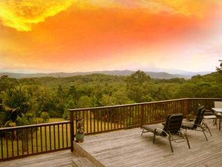 Daintree Valley Cottage - Daintree vacation rentals