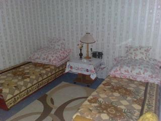 Bogacs  village apartment - Bogacs vacation rentals