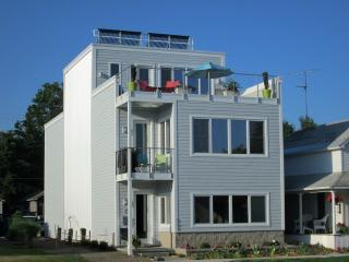 Downtown Traverse City ON THE BAY ! - Suttons Bay vacation rentals