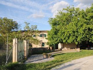 Beautiful, modernized spacious farmhouse on working organic farm - Llubi vacation rentals