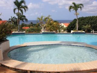 Royal Palm Holiday Apartment - Willemstad vacation rentals