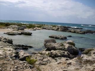 Nardò Puglia House  elegant Natural Park - Nardo vacation rentals