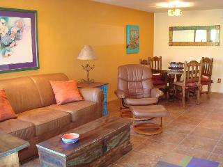 First Floor New 2 Bedroom with Great Mountain Views and Southwest Interior - Tucson vacation rentals