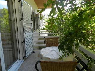Apartments Ljubica - 11431-A2 - Vodice vacation rentals