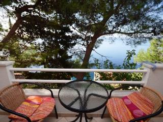 Apartments Vjekoslav - 42581-A3 - Pisak vacation rentals