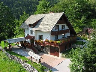 Fantastic apartment  Brglez 8  Bled * * *  Bled - Most na Soci vacation rentals