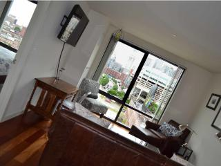 Canal Street Luxury West End / North End + Views - Brookline vacation rentals