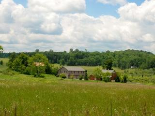 Mulberry Hill Estate Carriage House - Mansfield vacation rentals