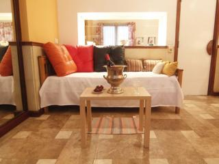 Dream, bright, 3 Huéspedes + WIFI, in  RECOLETA - Buenos Aires vacation rentals
