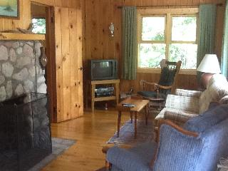 3 Season Cabin near Ely, MN on Bear Island Lake - Biwabik vacation rentals