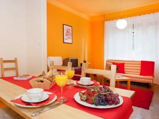 Georgina apartment - near to the Váci street - Budapest vacation rentals