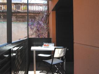 Park Güell Repartidor - Barcelona vacation rentals