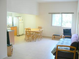 Spaceious Rehavia 3 bdr apartment (3) - Jerusalem vacation rentals