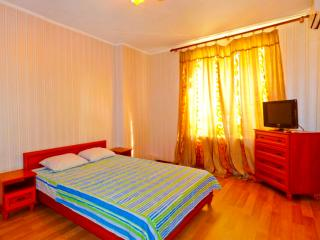 1 bedroom business class apartment on Pushkinskaya - Kharkiv vacation rentals