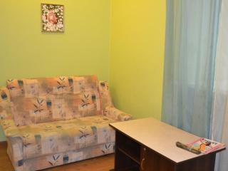1 bedroom business class apartment in the centre - Kharkiv vacation rentals