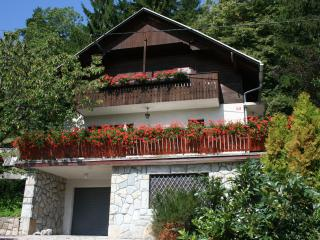 Holiday house Kristan, view on lake - Slovenia vacation rentals