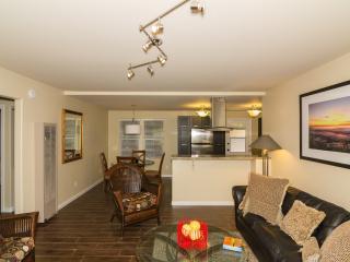 New home steps to La Jolla Shores beach & park - La Jolla vacation rentals