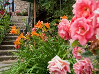 Potes. Picos De Europa - Cantabria vacation rentals