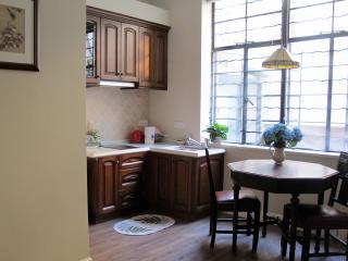 Luxury1 BR at city center, next to Xintiandi - Shanghai Region vacation rentals