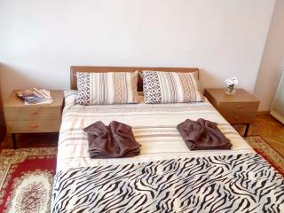 Beautiful and cozy studio apartment on Shevchenko Ave. - Lviv vacation rentals
