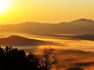 Sweet Afton : Charlottesville Blue Ridge Cottage - Duck vacation rentals