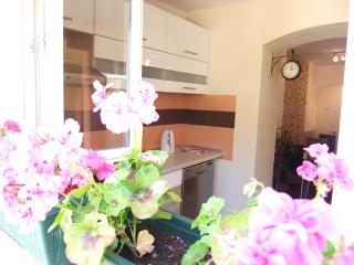 SPLIT LOVELY APARTMENT IN THE CENTER WITH GARDEN - Split vacation rentals
