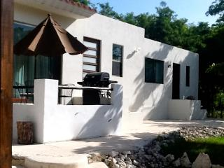 New AKUMAL 2 Bedroom Jungle Retreat A/C & WIFI - Akumal vacation rentals